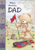 Dad Father Birthday Cards2141